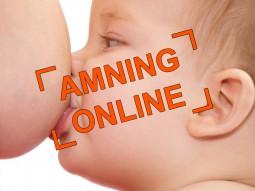 aming-online-babyz
